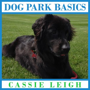 dog park basics audio v5 20161130