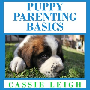 puppy parenting basics audio v2 20161122