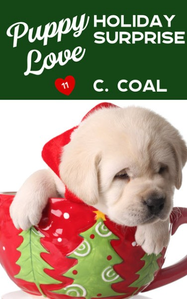 Puppy Love Holiday Surprise small